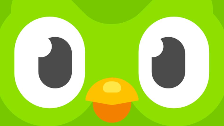 Mildly threatening Duolingo owl meme